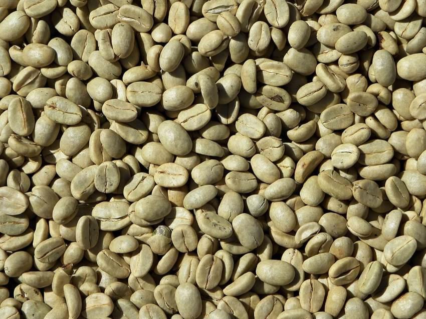 grüner kaffee aus dem jemen