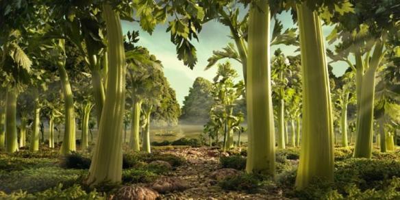 """""""Celery Forest."""" Photo: Carl Warner. Source: npr.com"""