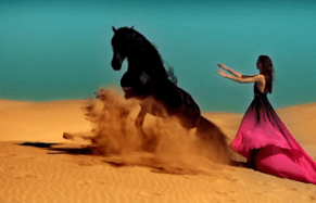Source: Still from a YouTube video of Desert Rose.