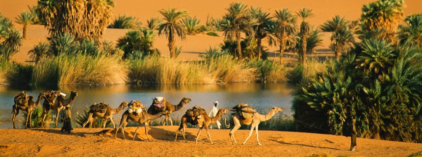 Waw an Namus: An Oasis in a Volcanic Crater Amusing Planet George steinmetz camel photo