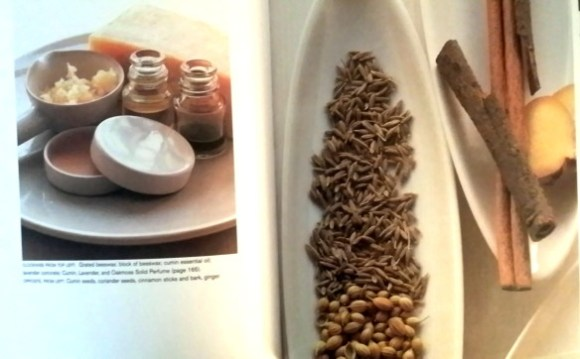 A page in Aroma. Photo: my own.