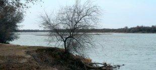 Уровень воды в Сырдарье приблизился к критическому