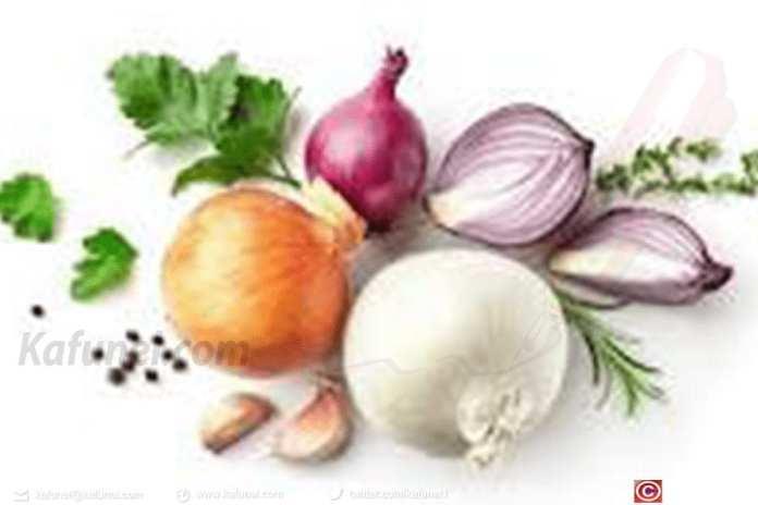 Encyclopédie des aliments : Oignon à tout comprendre en 2 min 1