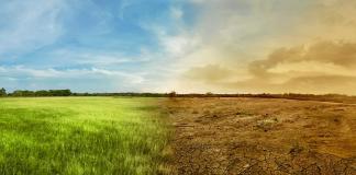 Les effets visibles du changement climatique.
