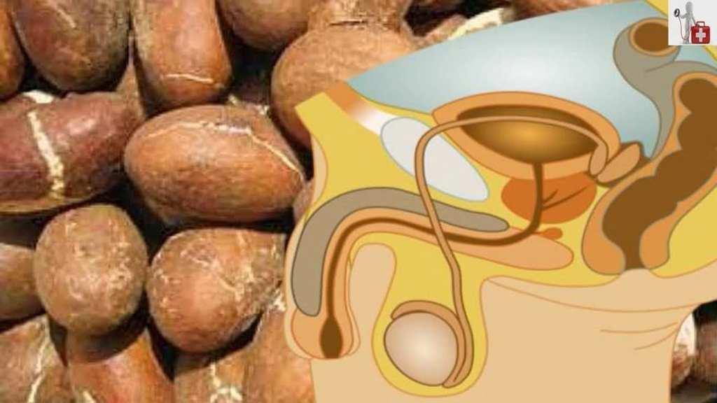 Ail + cola + gingembre +miel: combinaison miracle pour santé