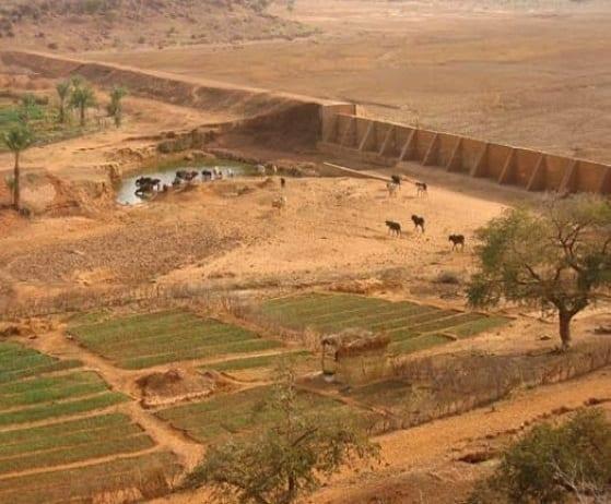 accès des femmes à la terre en Afrique de l'Ouest
