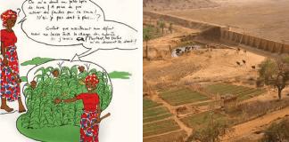 accés des femmes au foncier au sénégal et au burkina faso - Capture