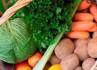 Halte au bio bashing ! Une forme de pollution généralisée affecte ces produits (avis d'expert)