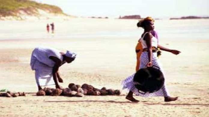 Îles Karones : Une randonnée de 8 jours à travers la basse Casamance 1