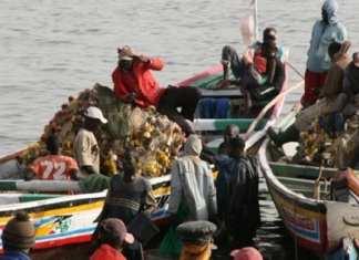 Accidents maritimes : 61 pêcheurs portés disparus depuis janvier