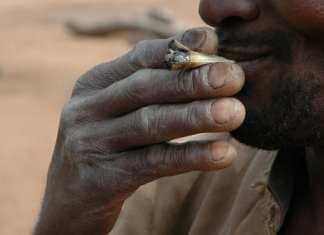 Cannabis (photo), cocaïne, héroïne, méthamphétamines... Pays de transit dans le trafic de drogue sous-régional, le Burkina Faso devient un territoire de consommation. (Image d'illustration) © Sean_Warren/Gettyimage