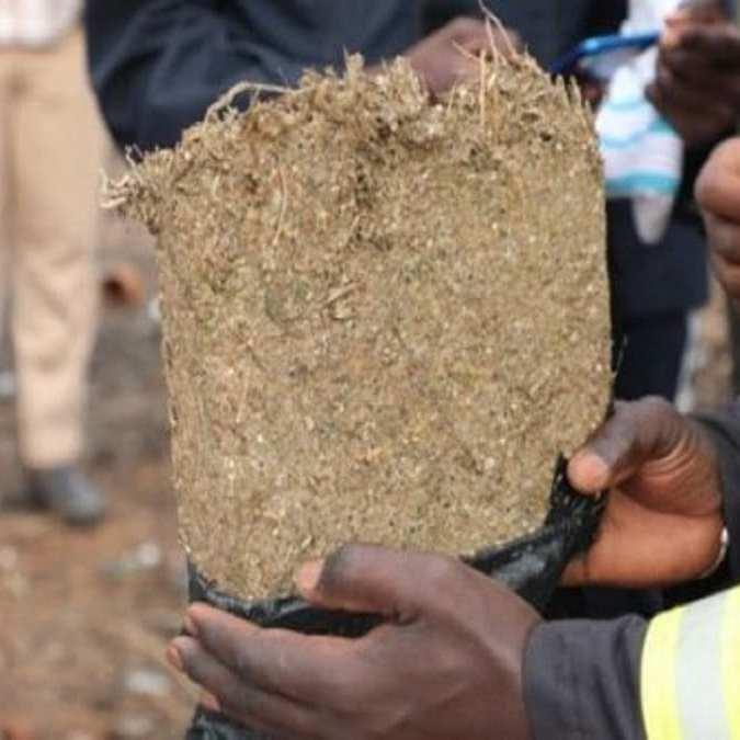 Drogue 10 Kg de yamba saisis à Kaffrine