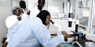 Le personnel scientifique à la recherche du coronavirus, dans le laboratoire sécurisé de l'Institut Pasteur de Dakar, le 3 février 2020. Seyllou / AFP