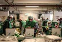 travailleurs pauvres dans la précarité
