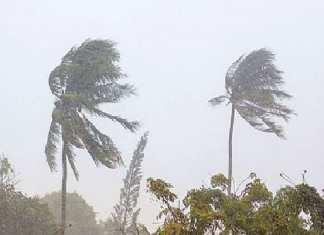 Des pluies attendues dans plusieurs régions du Centre