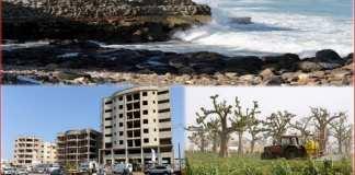 La terre au Sénégal appartient-elle aux autochtones-Capture Kafunel.com