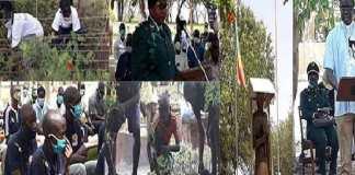 Un camp de reboisement à Ngazobil pour planter plus de 20 000 arbres