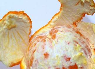 Avez-vous des zests d'orange Ne les jetez pas car VOICI ce que vous pouvez faire avec !
