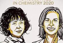Emmanuelle Charpentier et Jennifer Doudna, prix Nobel de chimie 2020. Nobel Prize