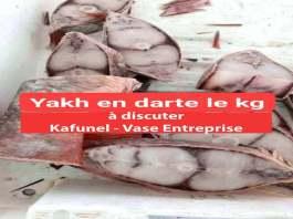 Yakh en darte