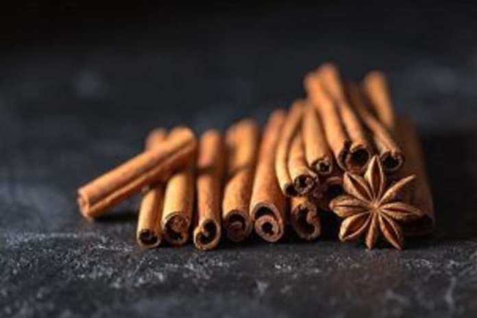 cinnamon-N°9 la Cannelle
