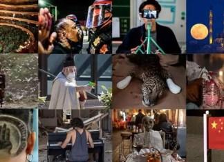 L'année 2020 en images Un regard par mois sur une année extraordinaire