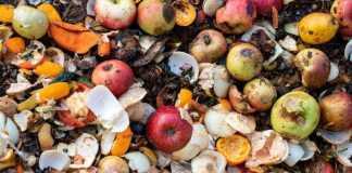 Gaspillage de nourriture la quantité jetée s'élève à 900 millions de tonnes