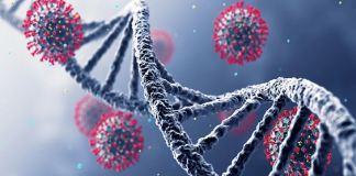 Covid-19 www.kafunel.com un variant résistant aux anticorps des vaccins ARNm