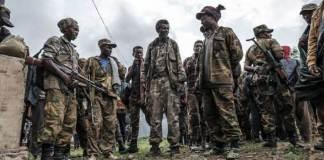 Des milices amharas sur le pied de guerre à l'ouest et au sud du Tigré