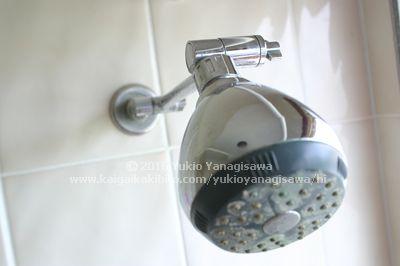 シャワーヘッドの写真