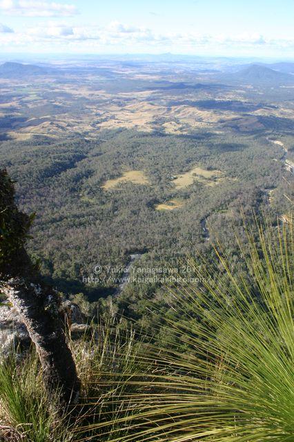 マウントミッチェル山頂からの眺め