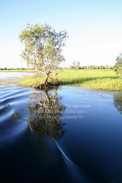 水面に反射する景色