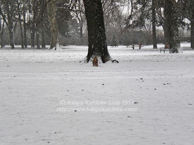 ウィーンの冬景色