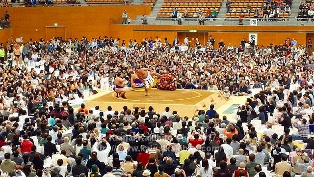 大相撲(写真は地方巡業時のものです)