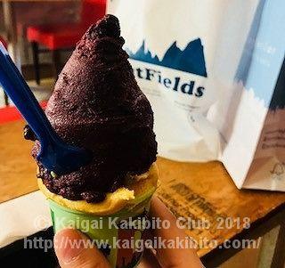 アルゼンチンのアイスクリーム