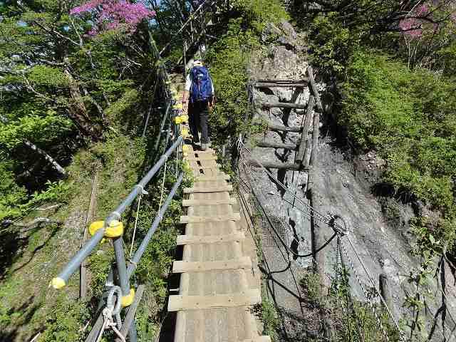大倉尾根の途中にかけられた橋