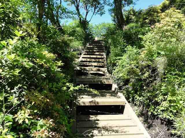 丹沢表尾根縦走ルートの階段