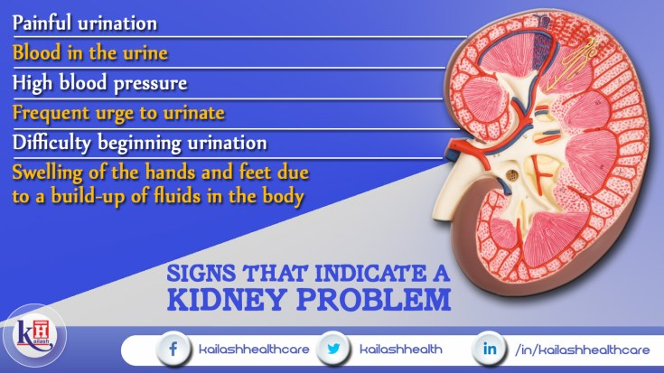 Signs that Indicate a Kidney Problem
