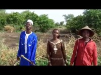 A Calming Fulbe Music: Love That Never Ends