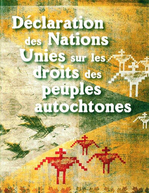 Livret sur la Déclaration des Nations Unies sur les droits des peuples  autochtones (pdf) (2012) - KAIROS Canada