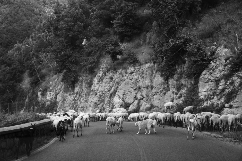Da muss man dann mal durch. Der harte Weg zur Amalfi Cost
