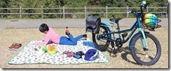 picnicimage