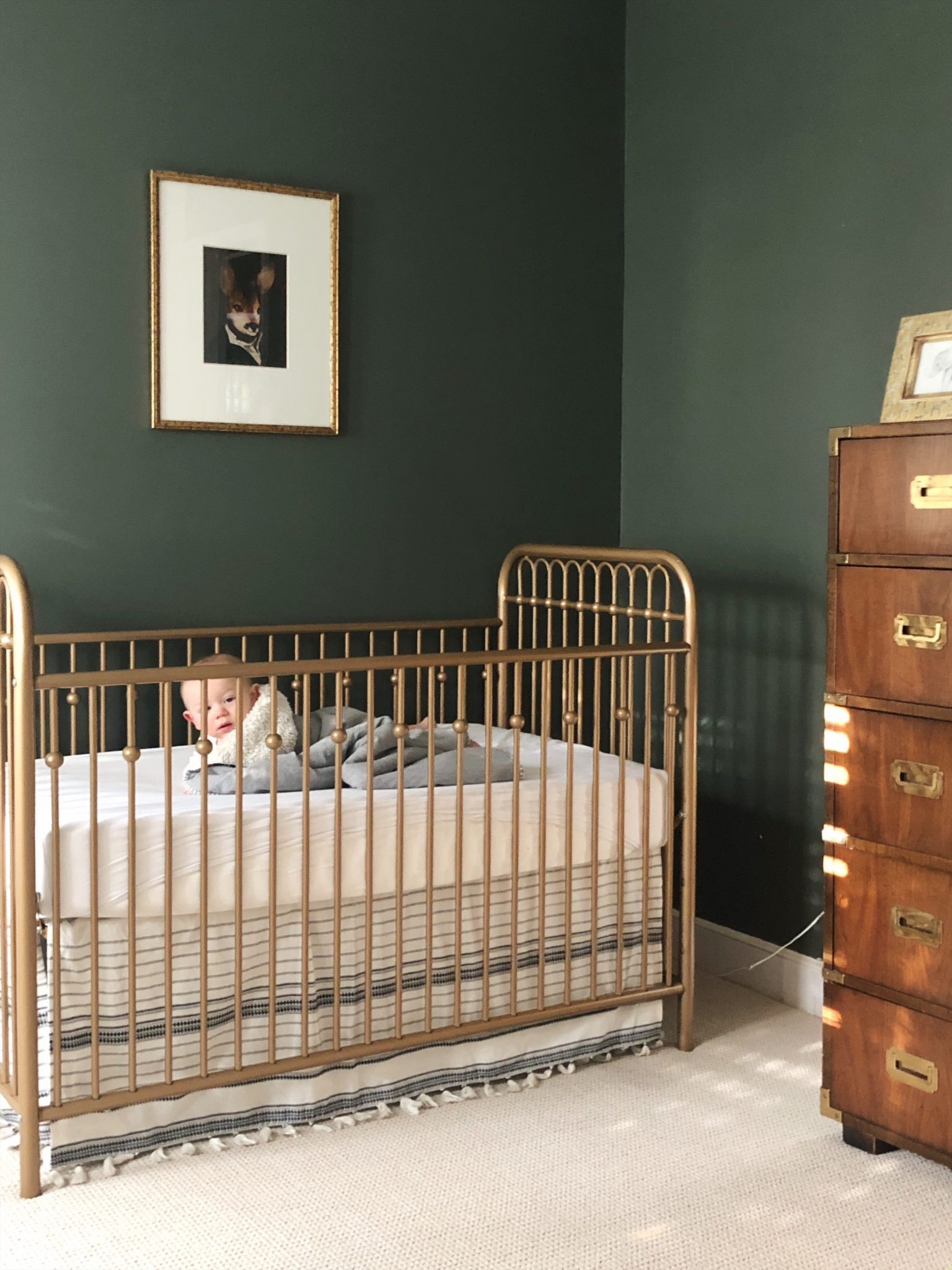 Baby boy dark green nursery gold crib