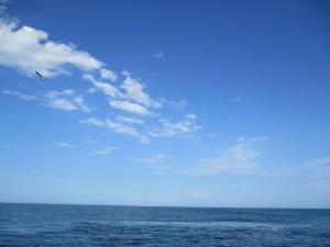 青い空と海での散骨
