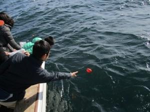 東京海洋散骨チャーター