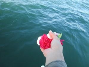 代理海洋散骨