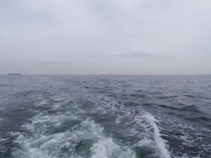 東京湾代理散骨