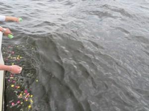 東京海洋散骨の合同プラン