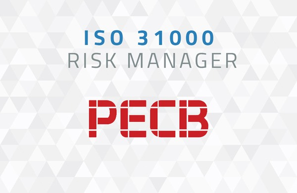 iso 31000 risk manager