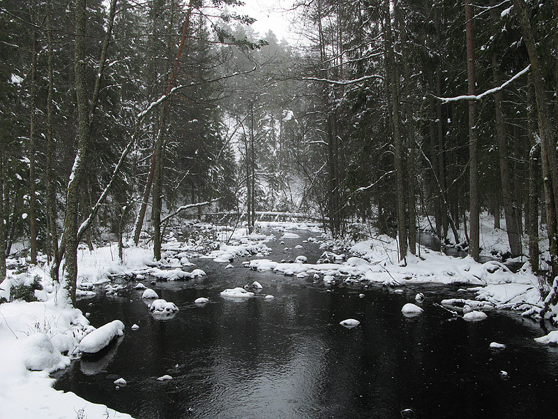 Bäcken vid SJöbo